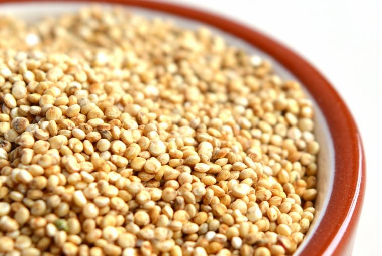 18. Quinoa, czyli komosa ryżowa, co to takiego?