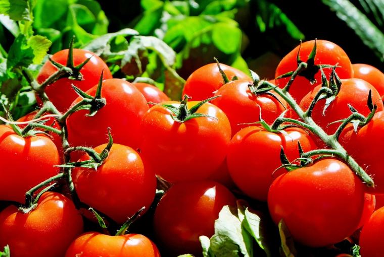 27. Jak pan może, panie pomidorze?!